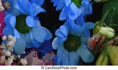 bouquet of blue flowers close-up of  video 4K