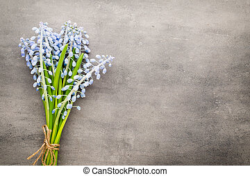 Bouquet of blue muscari on rustic gray background.