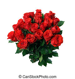 Bouquet of bright red roses on a white background.
