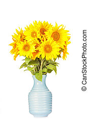 Bouquet of bright yellow sunflowers with an old blue jug on a white background