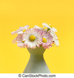 Bouquet of chamomile in vase on a bright yellow background.