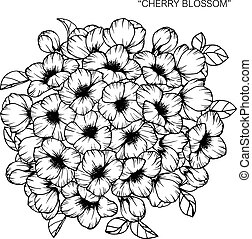 Bouquet of cherry blossom flowers drawing.