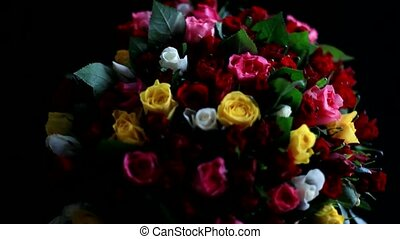 Bouquet of colorful roses on black background. 1920x1080