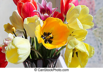 Bouquet of colorful spring tulips