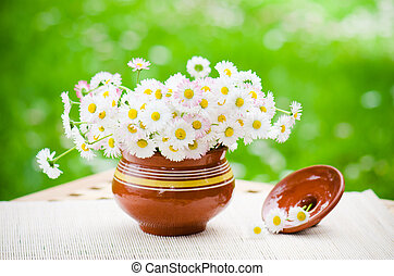 Bouquet of delicate daisies in a pot at the table