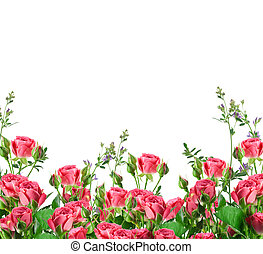 Bouquet of delicate roses, floral background