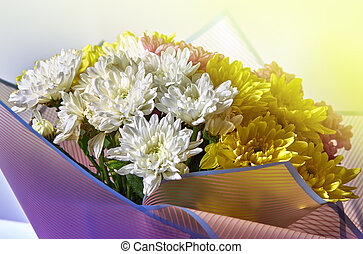 Bouquet of different color chrysanthemums on a light background