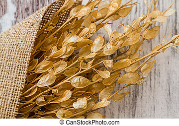 Bouquet of Dried Herbs