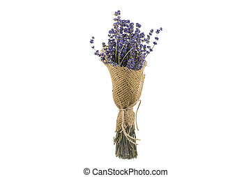 Bouquet of Dried Lavender on a White Background