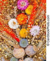 Bouquet of dry flowers
