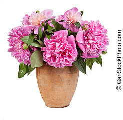 Bouquet of flowers in a vase old isolated on white background
