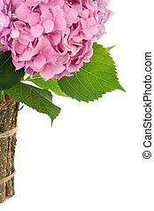bouquet of flowers isolated on a white