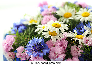 Bouquet of flowers with chamomile on white background