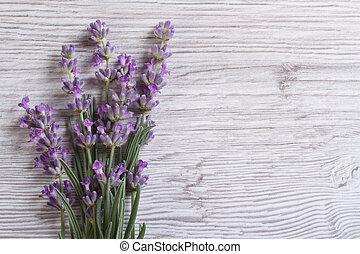 bouquet of fragrant lavender flowers. floral frame