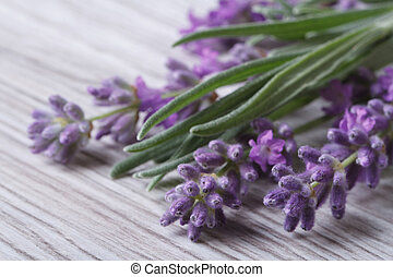 bouquet of fragrant lavender flowers