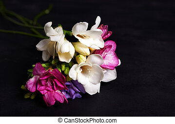 bouquet of freesia