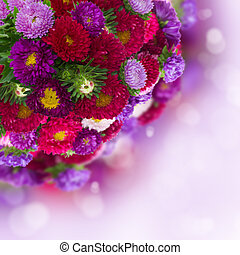 bouquet of fresh aster flowers on violet bokeh background