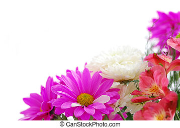 Bouquet of fresh flowers on white background with copy space