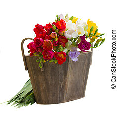 bouquet of fresh freesias flowers in wooden pot