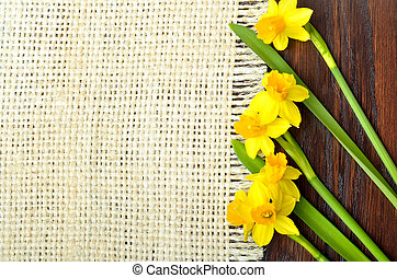 Bouquet of fresh spring narcissus flowers on wooden background.