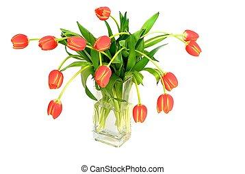 Bouquet of fresh tulips in vase