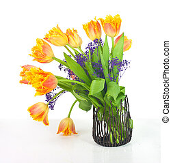 bouquet of fringed tulips