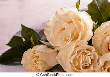 Bouquet of light roses on a light background