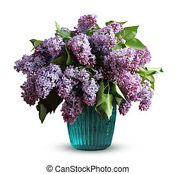 Bouquet of lilac in a vase isolated on a white background.
