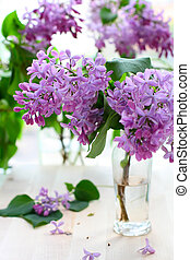 lilac - Bouquet of lilac in a vase.
