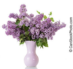 Bouquet of lilac in vase isolated on white