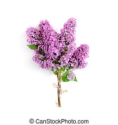 Bouquet of lilac tied with twine on a white background