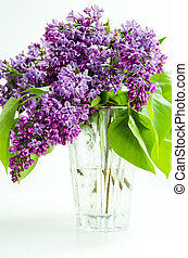 Bouquet of lilacs in a glass vase on a light background.