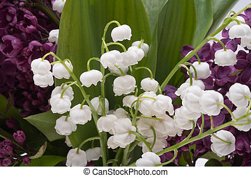 bouquet of lilacs with lilies of the valley close up