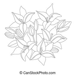 bouquet of lilies, flowers and buds for your coloring book