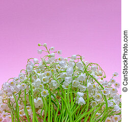 bouquet of Lily of the valley flowers on a light pink background with a copy space