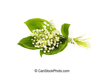Bouquet of lily of the valley isolated on white background