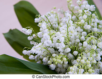 Bouquet of lily of the valley