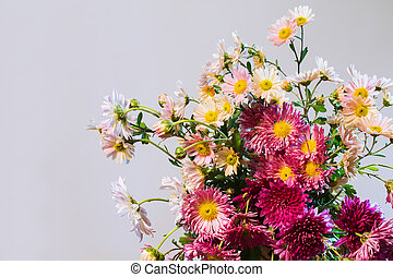 bouquet of multicolored chrysanthemums on a light background