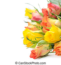 Bouquet of multicolored roses isolated on white background with copyspace