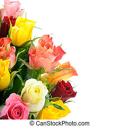 Bouquet of multicolored roses isolated on white background...