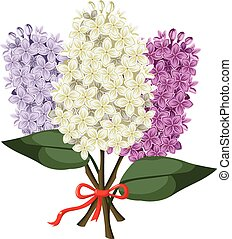 Bouquet of multicolored three branches of lilac