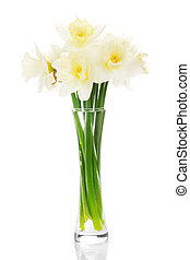 Bouquet of narcissuses in a vase
