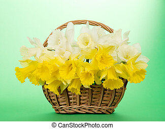 Bouquet of narcissuses in a wattled basket