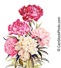 Bouquet of peonies watercolor
