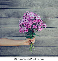 Bouquet of phlox flowers in female hand on wooden background