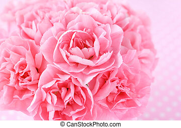 Bouquet of pink cnation flowers with pink ribbon on pink barackground