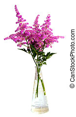 Bouquet of pink flowers in vase isolated on white background