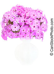 Bouquet of pink phlox in a ceramic vase