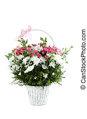 Bouquet of pink roses in basket isolated on a white