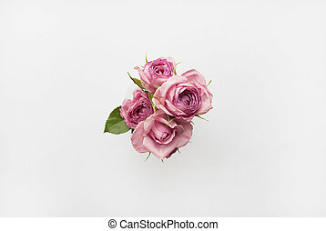 Bouquet of pink roses on a white background. Top view